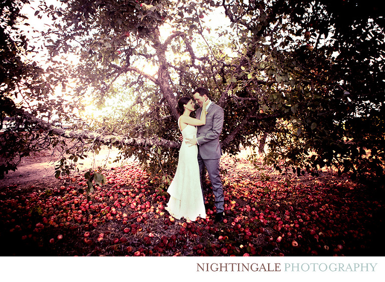 Vine-Hill-House-Wedding