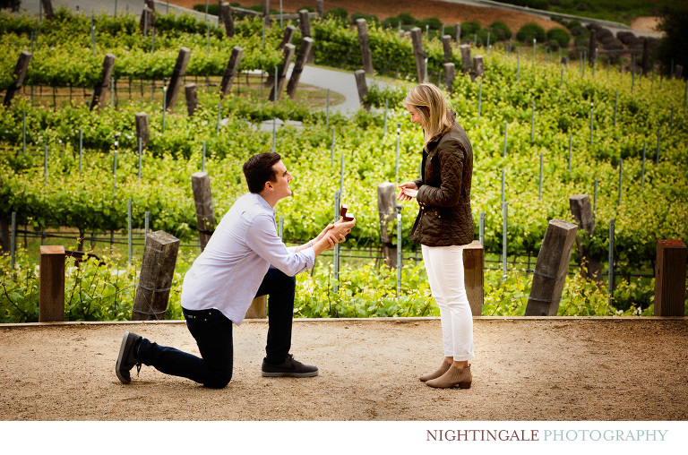 Carmel Valley Proposal Session