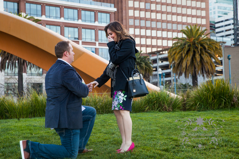 Marriage proposal in San Francisco
