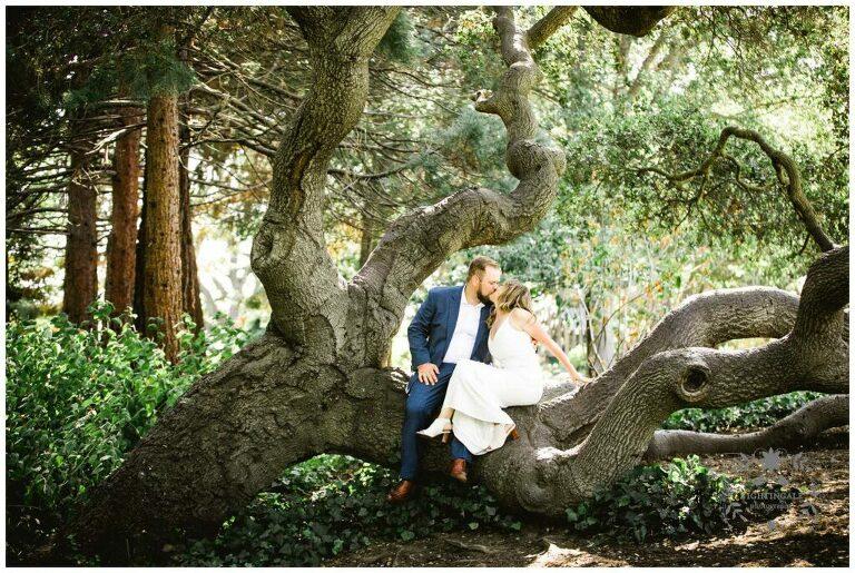 Wedding couple kiss on oak tree in Piedmont, Ca