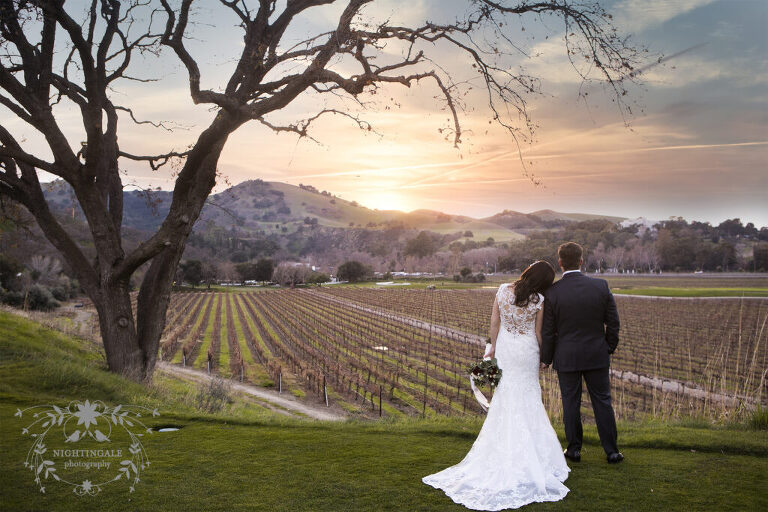 wedding portrait of couple in the vineyards of Napa Valley