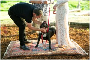 couple pets their dog at thier intimate california wedding