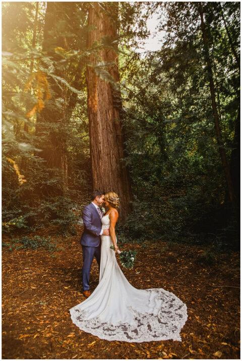 couple stand beneath redwood tree during small santa cruz wedding